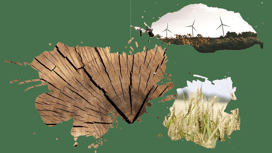 Diversas imagens relacionadas ao INBEC. Projeto INBEC de Economia Biocircular